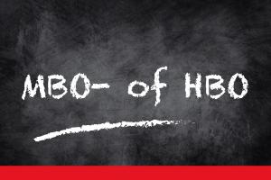 mbo- of hbo-bijles